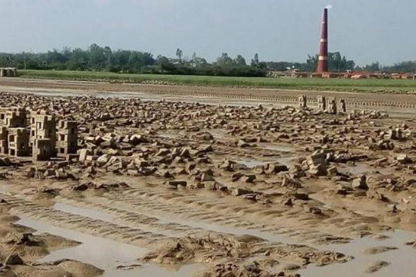 पानीले ईट्टामा रु १५ करोडको क्षती