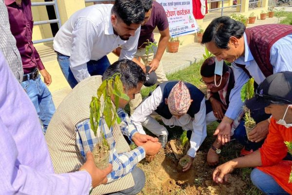 ५२औं स्थापना दिवसको अवसरमा बृक्षा रोपण
